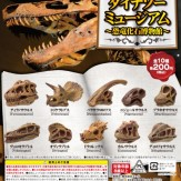 ダイナソーミュージアム~恐竜化石博物館~(50個入り)