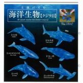 立体パズル[海洋生物]クジラ目(40個入り)