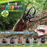 甲虫王国ムシパラダイスフィギュア(50個入り)