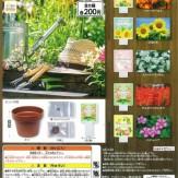 home gardening[Flowers](50個入り)