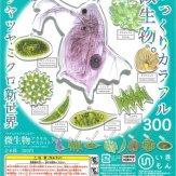 サイエンステクニカラー 微生物アクリルマスコット(40個入り)