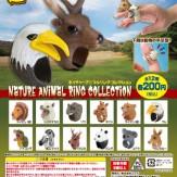 ネイチャーアニマル リングコレクション(50個入り)