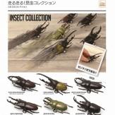 走る!走る!昆虫コレクション(40個入り)