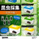 昆虫採集~夏休み編~(40個入り)