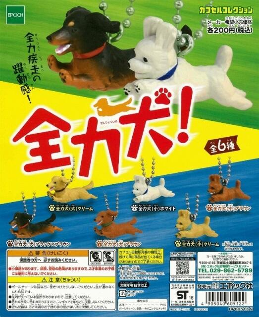 全力犬(50個入り)