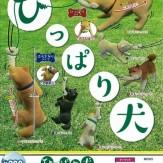 ひっぱり犬(50個入り)