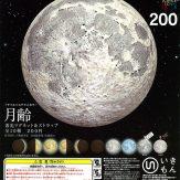 サイエンステクニカラー 月齢 蓄光マグネット&ストラップ(50個入り)