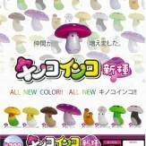 キノコインコ新種(50個入り)