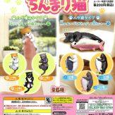 ちんまり猫(50個入り)