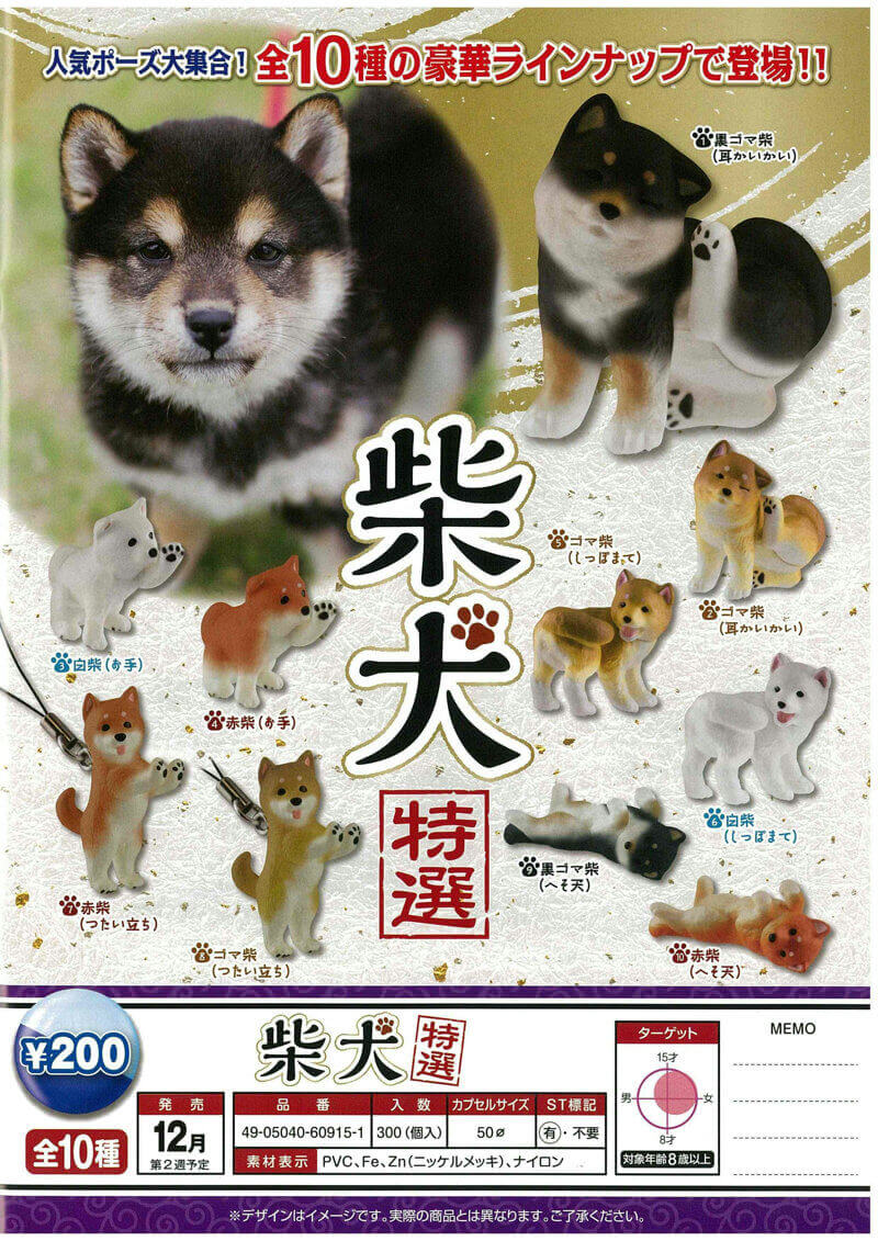 柴犬-特選-(50個入り)