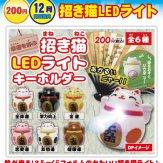 招き猫LEDライト(50個入り)