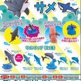 ちんまりサメ(50個入り)