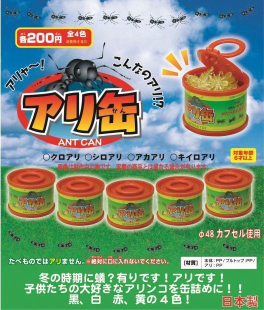 アリ缶(50個入り)