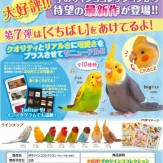 手のりインココレクション~キュートなくちばし~(50個入り)