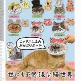 世にも不思議な猫世界 ニャアさん達のおかぶりポーチ(40個入り)