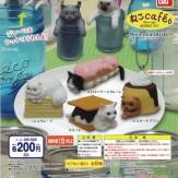 アニコラ ねこCafe'6(50個入り)