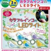 カラフルインコのLEDライト(50個入り)