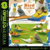 カプセルQミュージアム バードガーデン -鳥の庭-1 熱帯のコンパニオンバードたち(40個入り)