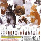 ネイチャーテクニカラーMONO ウサギ マグネット×ストラップ(50個入り)