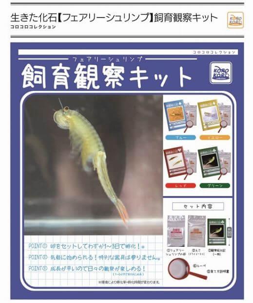 生きた化石[フェアリーシュリンプ]飼育観察キット (50個入り)