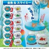 金魚&スライミー(40個入り)