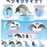ペンギンダイブ?(50個入り)
