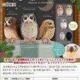 復刻版 幸運の梟コレクション(50個入り)