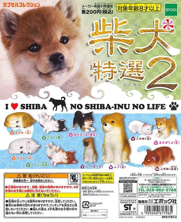柴犬 特選2(50個入り)