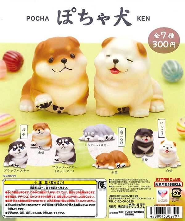ぽちゃ犬(40個入り)