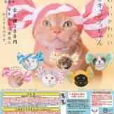 かわいい かわいい ねこキャンディちゃん(50個入り)