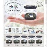 コロコロコレクション 育てる!眺める!飾り付ける!水草アクアリウム(40個入り)