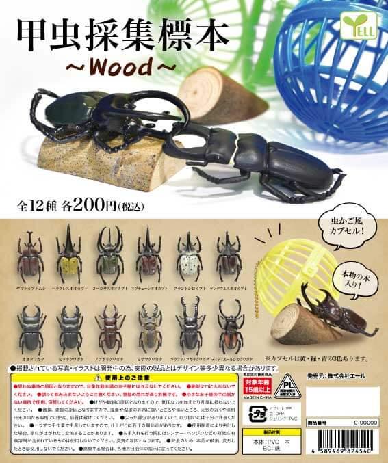 甲虫採集標本~Wood~(50個入り)