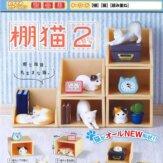 棚猫2(50個入り)