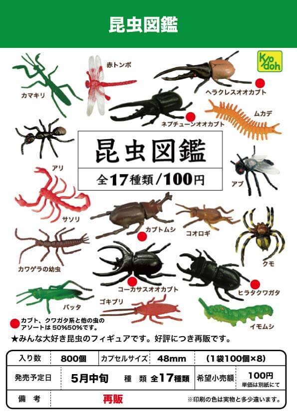 昆虫図鑑(100個入り)