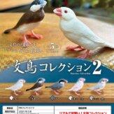 文鳥コレクション2(40個入り)