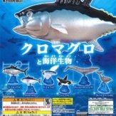 クロマグロと海洋生物(50個入り)