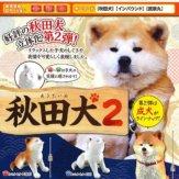 秋田犬2(50個入り)