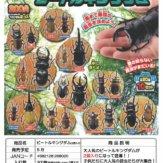 [2個入り200円]戦え!昆虫ワールド ビートルキングダム(50個入り)