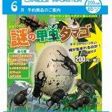 昆虫KING 謎の甲虫タマゴ(50個入り)