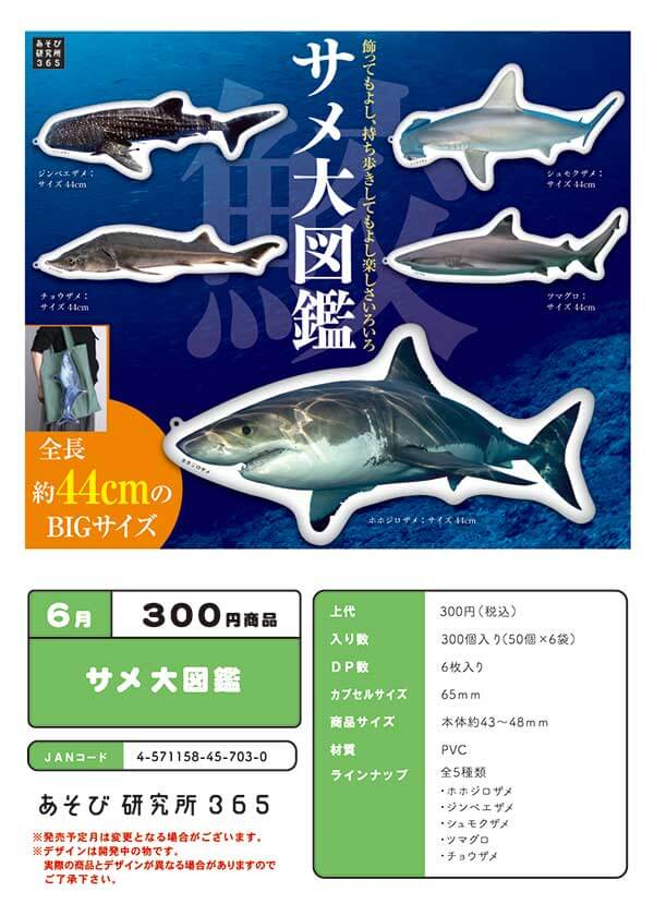 サメ 大図鑑(50個入り)