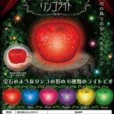 宝石の森のりんごのライト(50個入り)