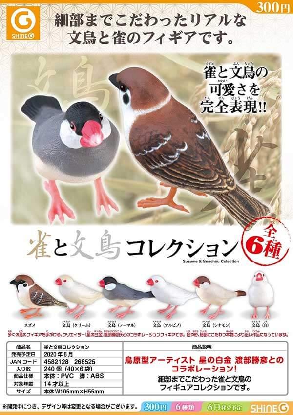 雀と文鳥コレクション(40個入り)