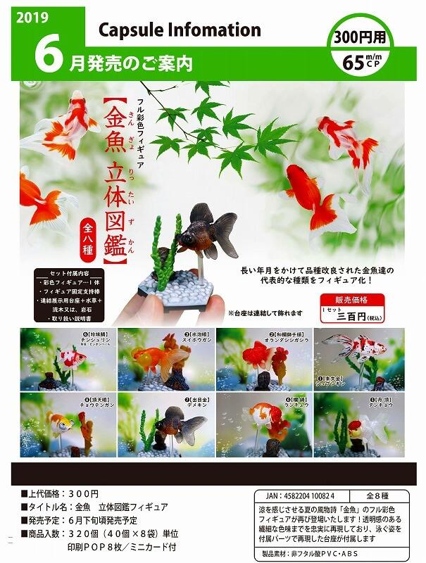 金魚 立体図鑑フィギュア(40個入り)