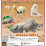 AIP 長沢芦雪の子犬(30個入り)