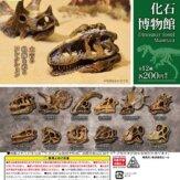 恐竜化石博物館(50個入り)
