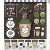 コロコロコレクション CAFE de グリーン[水栽培セット](40個入り)