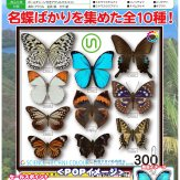 サイエンステクニカラー 鱗翅学者の私的標本アクリルマスコット[仮](40個入り)
