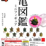 HG 亀図鑑ミニフィギュア[1カプセル2体入り](100個入り)