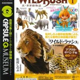 カプセルQミュージアム WILD RUSH 第1弾 アフリカ・サバンナ編(30個入り)