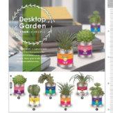 コロコロコレクション Desktop Garden [多肉植物 インテリア](40個入り)